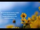Слово Божье - Псалом 28,29 Господь даст силу !