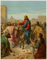 На ком ехал Иисус? На ослёнке или ослице? Мк. 11:7, Лк.19:35, Ин.12:14-15, Мф.21:7